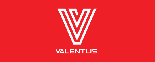 Valentus Review – Is This The Best Home Business For You?